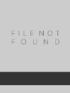 Mechanical design of machine elements and machines : a failure prevention perspective